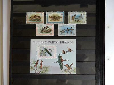 Turks & Caicos 1980 Birds Issues Mint Never Hinged x5 - Lot 5