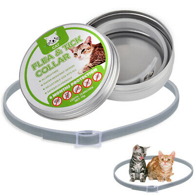 Flea and Tick Collar for Dogs Cats Waterproof Kills Fleas Prevents 8 Months