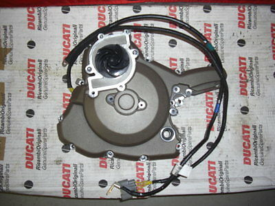 Ducati Monster 821 Motor Seitendeckel Links mit Lima Stator