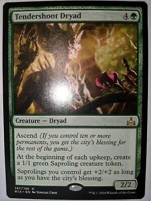 1X NM Tendershoot Dryad Rivals of Ixalan MTG Magic the Gathering