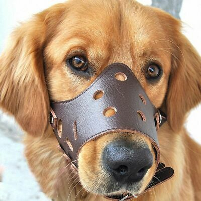 Adjustable Leather Dog Muzzle Anti Bark Bite Durable Training Product Puppy Dog