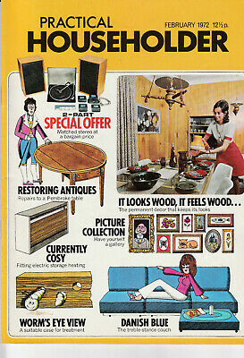 PRACTICAL HOUSEHOLDER Magazine February 1972 - It Looks Wood, It Feels Wood...
