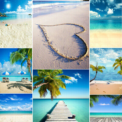 Summer Ocean Beach Backdrops Photography Coconut Tree Blue Sky Sea Sand Studio