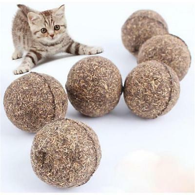 2pcs Funny Pet Cat Mint Ball Play Catnip Bell Toys Gifts Ball Coated  Toys MH