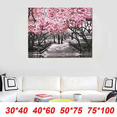 Black&White Pink Blossoms Wall Art Print Picture Canvas Wall Art Prints Unframed