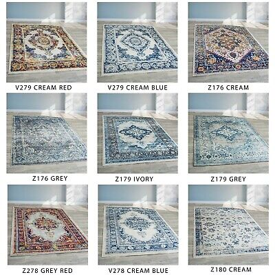 Traditional Vintage Style Modern Persian Rug Design Boho Shabby Chic Carpet Mats