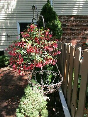 Vintage Wrought Iron Large Hanging Planter W/Green Glass Rondelles