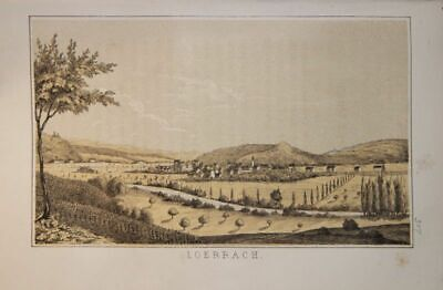 Lörrach. Gesamtansicht. Tinted Lithography by Metzger Nach Grether. (from: Fec