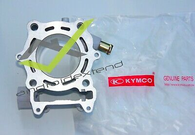 Kymco Downtown 125 / Xct-125 Engine Cylinder