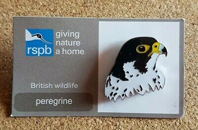 RSPB pin badge - peregrine - giving nature a home