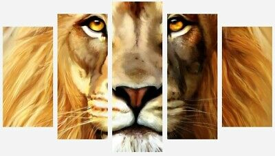 Lion Colourful Painting - Wild Animal Wall Art 5 Split Panel Canvas Pictures