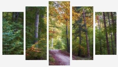 Green Forest Trees Nature Landscape Wall Art 5 Split Panel Canvas Pictures
