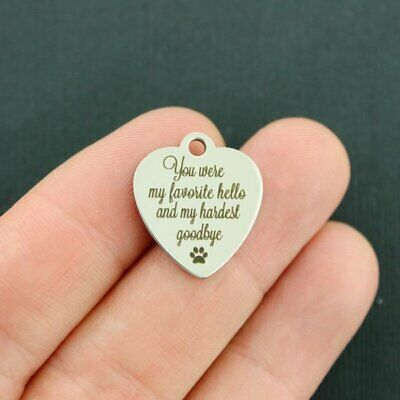 Pet Memorial Stainless Steel Charm - My favorite hello - BFS3231