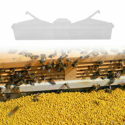 6'' Hive Beetle Reusable Trap Beekeeping Apiary Bee Hive Protector Equipment