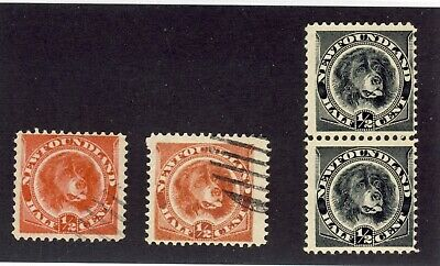 4x Newfoundland 1/2c Dog Stamps #56-Used 57-Used 58-Pair MNG Cat. Value = $51.00