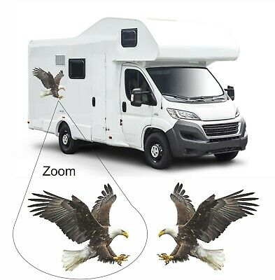Pair Full Colour Eagle 400mm x 350mm Decals Stickers for Van Motorhome Camper
