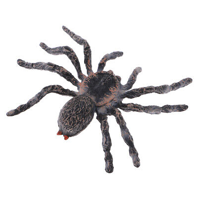 Realistic Animal Model Figures Brazilian White Spider Kids Pretend Play Toys