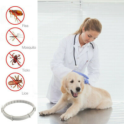 65CM Flea And Tick Repellent/ Treatment For Puppy, Dogs, Cats Adjustable Collar