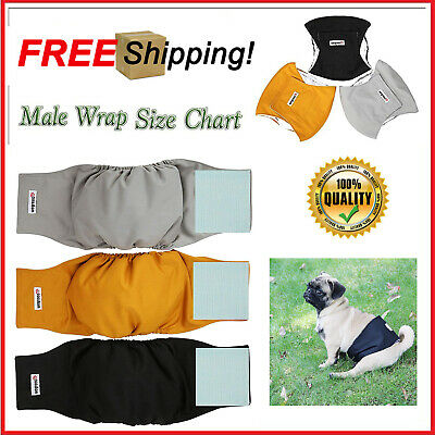 Medium Washable Male Dog Diapers Belly Wrap Reusable Absorbent Puppy Pack of 3