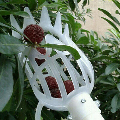1Pc Plastic Fruit Picker Without Pole Fruit Collector Gardening Picking Tool.