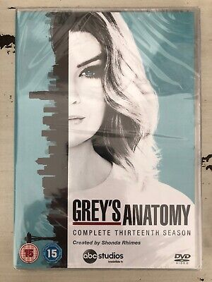 Greys Anatomy  Complete Season 13 [DVD]