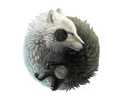 Wolf Love - Ying And Yang Nature Animals Photo Poster / Canvas Picture