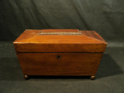 19th Century English REGENCY Walnut Tea Caddy, c. 1800-1820
