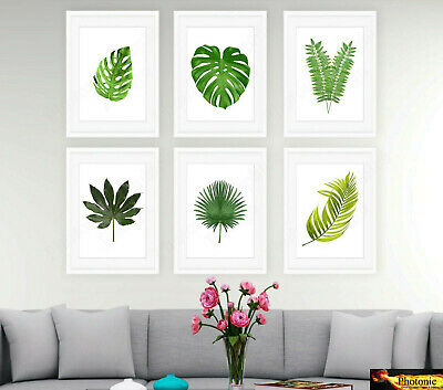 35 Types Botanical Tropical Photo Prints A4 or A3 Art Fern Palm Print Pictures