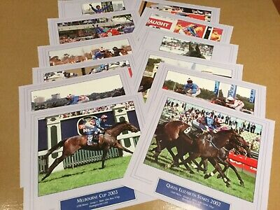 """""""Makybe Diva""""  Horse Racing Prints  X 12 - Melbourne Cup -   New - Gloss Finish"""
