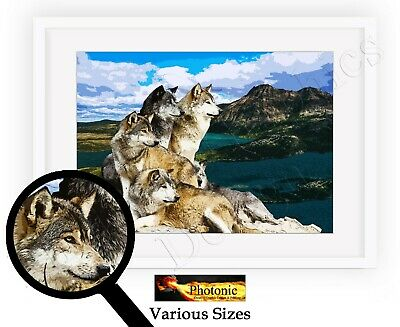 Wolf Pack Picture Wolves Animal Photo Poster Print ONLY Wildlife Wall Art Print