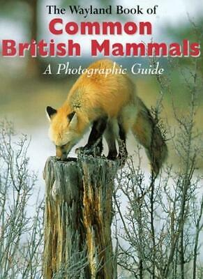 Common British Mammals: A Photographic Guide (Wayland Book of),Shirley Thompson