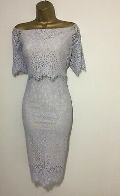 eb57b6a94476 Bnwt Coast Stretch Marsha Silver Bardot Lace Midi Occasion Dress Size 16