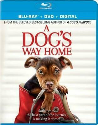 A Dog's Way Home (DVD,2019) New/Sealed without Slip Cover