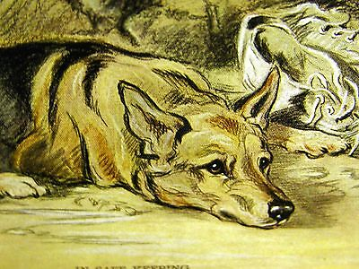 Lucy Dawson GERMAN SHEPHERD & SNEAKERS Collectors Card 1930-40s Dog Art Matted