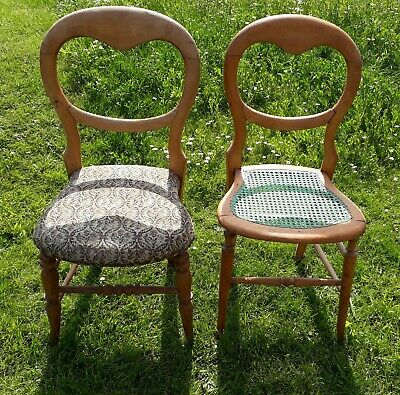 2 Edwardian balloon back chairs (for restoration) - structurally sound
