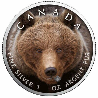 GRIZZLY BEAR - CANADA'S WILDLIFE - MAPLE LEAF - 2019 1 oz Pure Silver Color Coin