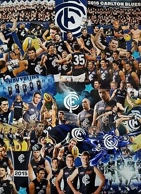 Carlton Football Club Glass Picture Frame Collectables Wall