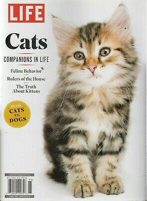 LIFE Cats Companions in Life 2019 Feline Behavior/Rulers of the House/Kittens