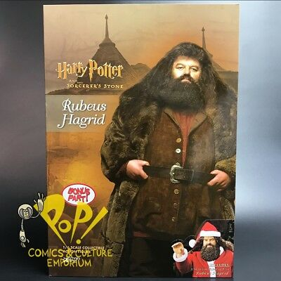 """HARRY POTTER Sorcerers Stone RUBEUS HAGRID Special Version 12"""" FIGURE Star ACE!"""