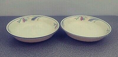 """2 Lenox Poppies On Blue Chinastone Pasta Soup Cereal Bowls 7 3/4"""" Made In USA"""