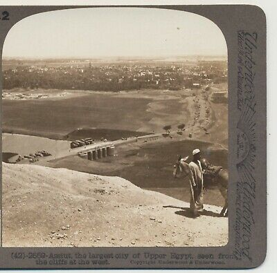 Overlooking Assiut from the Cliffs from the west Egypt Stereoview c1900
