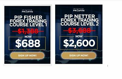 Forex trading course level 2 pip netter