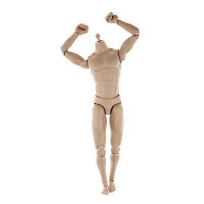 Action Figure Toy Male Narrow Shoulder Body 1/6Scale Accessory Plastic Skin