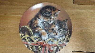 'Cody And Courtney' - Baskets Of Love Cat Plate - Bradford Exchange