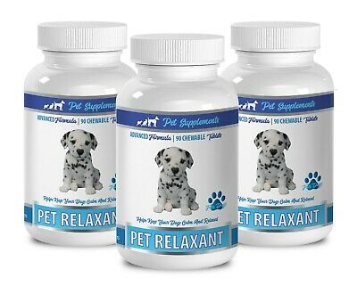 dog tummy - DOG RELAXANT - tummy dog 3B