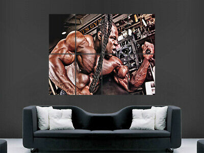 Bodybuilding Poster Gym Weights Fitness Bodybuilder Workout Weightlifting Stong