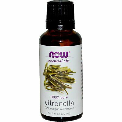 Now Foods  Essential Oils  Citronella  1 fl oz  30 ml