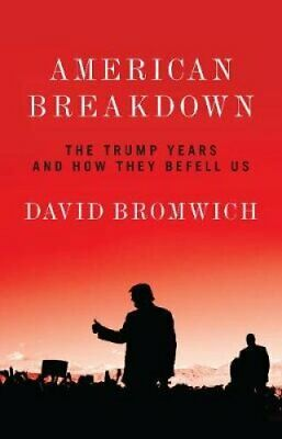 American Breakdown The Trump Years and How They Befell Us 9781788737265