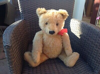 A Excellent Condition  1950's Vintage Steiff Teddy Bear With Button