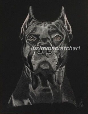 Pets Cat Dog Corso ORIGINAL signed Scratchboard art reg board 8.5x11 by LuZimm